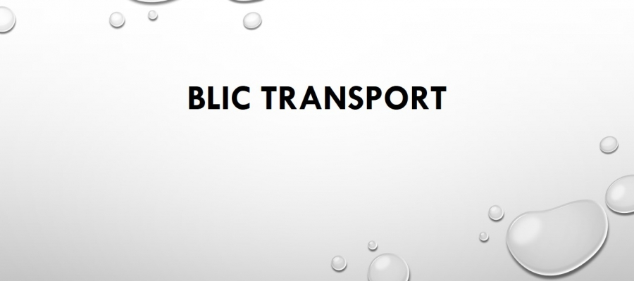 Blic Transport